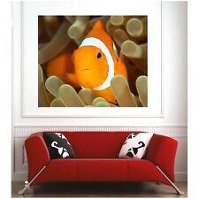 Affiche poster poisson clown 5730250 Art déco Stickers