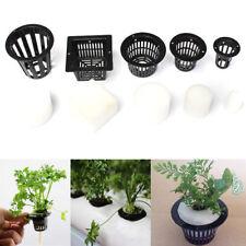 10 Mesh Pot Net Basket + 10 Clone Cloning Collar Foam Insert Plant Hydroponic