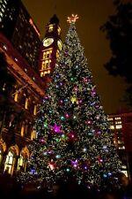 Natale a LED di alta qualità multi funzione memoria Chaser LUCI DI NATALE BIANCO