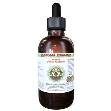 Coleus Alcohol-FREE (Coleus Forskohlii) Dried Root Liquid Extract