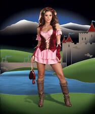 Adult Halloween Sexy Renaissance Faire Maiden Costume