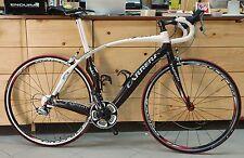 Bici corsa Carrera Phibra 2 carbon Shimano Durace Fulcrum SLR
