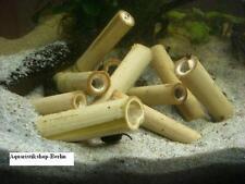 10 Stück Bambusstäbe für Garnelen, Welse, Krebse