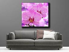 Tableaux toiles déco en kit Orchidée Rose réf 9538378