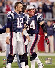 Tom Brady / Tedy Bruschi New England Patriots Photo 8x10 - Combined Shipping