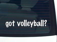 got volleyball? VOLLEY BALL FUNNY DECAL STICKER ART WALL CAR CUTE