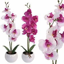 Gerbera 38cm weiß im Topf GA Kunstpflanzen künstliche Pflanzen Kunstblumen