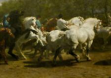 Rosa Bonheur: The Horse Fair. Art Print/Poster (0016070)