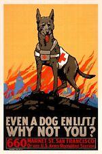 WW2 US Army Propaganda Poster Dog Animal San Francisco California WWII Red Cross