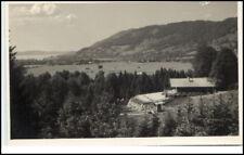Foto-AK Reitmayer ~1930/40 Alpen Wildpark Rottach Egern