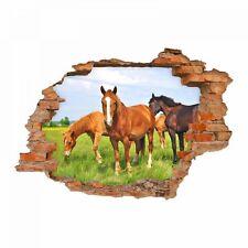 nikima 056 Wandtattoo Pferde - Loch in der Wand Wiese Fohlen Kinderzimmer reiten