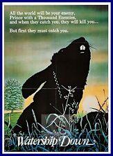 Watership Down    1970's Movie Posters Classic Cinema