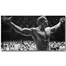 Arnold Schwarzenegger Bodybuilding Fitness Silk Poster 13x24inch Gym Decor 038