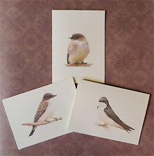 12 Handmade Blank Field & Stream Birds Swallow, Phoebe, King Bird Notecards