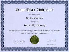 Doctor Hairdressing Novelty Diploma Salon Beauty Chair