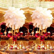 10/50pcs White Long Ostrich Feathers 30cm-35cm Wedding Party Hotel Banquet Decor