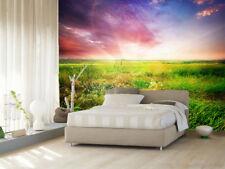 Papel Pintado Mural De Vellón Cielo Verde De Pastizales 2 Paisaje Fondo Pantalla