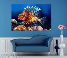 3D Pretty Fish Wall Stickers Vinyl Murals Wall Print Decal Deco Art AJ STORE AU