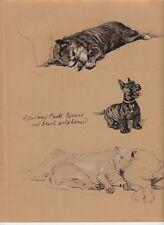 c. aldin original 1935 illustration of a aberdeen bull terrier & irish wolfhound