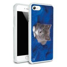 Manx Kitten Cat Blue Knitted Blanket Slim Hybrid Case Fit iPhone 8, 8 Plus, X