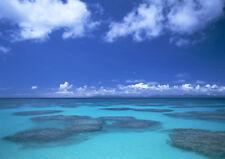 Coral Sea Canvas Pictures Blue Aqua Sea Bathroom Wall Art Prints All Sizes