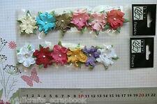 Paper Apple Blossoms 2 Coloured Packs 6 mixed shades 30-35mm Petaloo Multi List