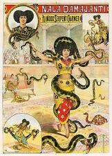 Vintage SERPENT hindou Serpent Charmer Circus Poster A3 imprimer