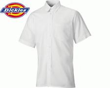 Dickies Oxford Weave Short Sleeved Shirt, White, SH64250