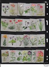 Série  étiquettes  Allumettes Japon Fleurs 2