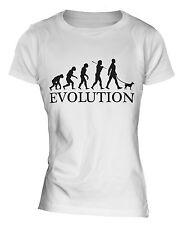 MINIATURE PINSCHER EVOLUTION OF MAN LADIES T-SHIRT TOP DOG GIFT WALKER WALKING