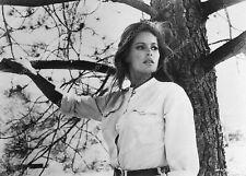 12737-033 beautiful Ursula Andress film Nightmare in the Sun 12737-33