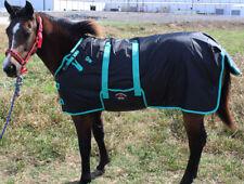 600D Miniature Weanling Donkey Pony Horse Foal Winter Blanket 51945