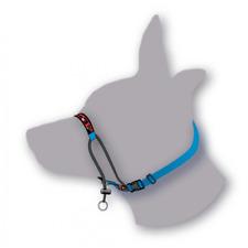 Black Dog Wear Training Halter