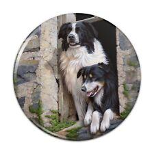 Border Collies Window Dogs Kitchen Refrigerator Locker Button Magnet