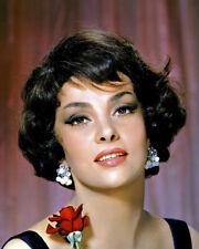 Gina Lollobrigida Stunning Sultry Glamour Pose Italian Bombshell Poster or Photo