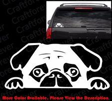PEEKING PUG Puppy Doggy Dog  Die Cut Vinyl Decal Car Window/Phone Sticker AM011
