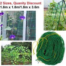 Veggie Patch Trellis Netting Climbing Garden Vine Net Tomato Zuchinni Cucumber