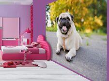 Adorable cute little pug kids girls bedroom wallpaper wall mural (4897352)