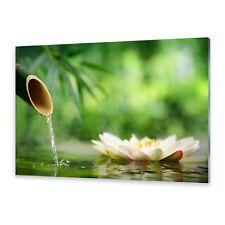 Acrylglasbilder Wandbild aus Plexiglas® Bild Bambusbrunnen