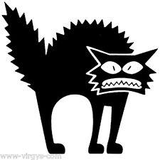Marrant 10x8 cm à 35x29 cm CHAT035 Sticker Décoration Animal Chat Rigolo