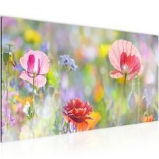WANDBILDER Blumen Mohnblume VLIES LEINWAND BILD - XXL BILDER KUNSTDRUCK 007512P