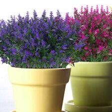 Artificielle Fleurs de Lavande Plantes 6 PièCes, Lifelike RéSistant Aux Y5X6