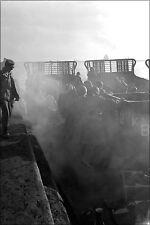Poster, Many Sizes; Marines Load Aboard U.S. Navy Lcm  Korean War Marine Corps