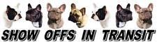 FRENCH BULLDOG Show Off Dog Car Sticker By Starprint