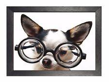 Chiwawa Weari White Beautiful Little Puppy Sweet Cute Animal Poster Glasses Dog