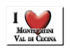 CALAMITA TOSCANA FRIDGE MAGNETE SOUVENIR I LOVE MONTECATINI VAL DI CECINA (PI)