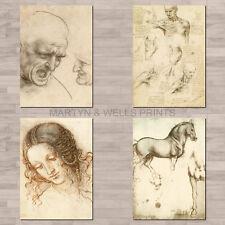 Leonardo Da Vinci A4 canvas paper / poster prints. Human and Animal studies.