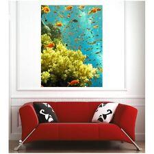 poster poster piccoli pesci 19239235 Art déco Adesivi