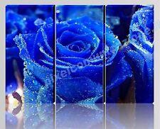 QUADRO MODERNO TELA ARREDO CASA ROSA BLU BLU FIORI FLOWER RUGIADA FLOWERS