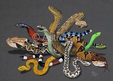 VENOMOUS SNAKES-Rattle Cobra Viper Herpetology Reptiles Science Nature T shirt
